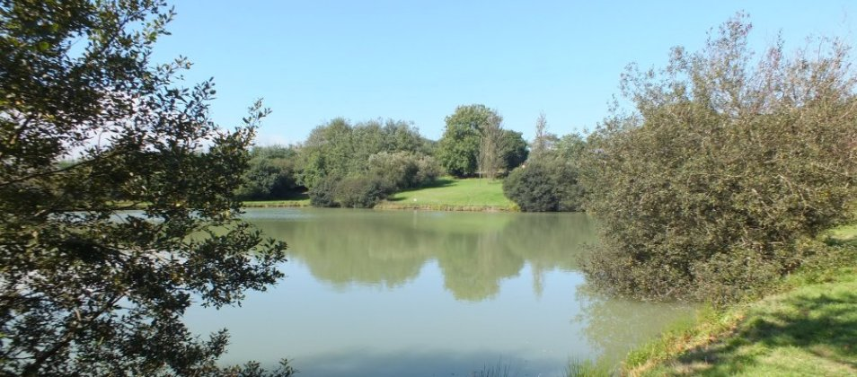 View over Blagdon Farm Fishing Lake